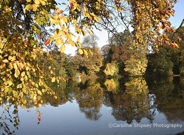 Emborough pond in Autumn Mendip Landscape
