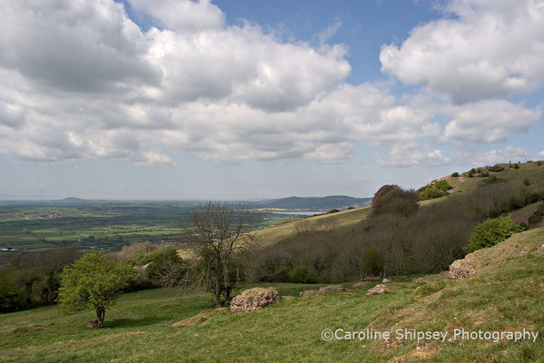 View towards the west, Wavering Down, Brean Down & coast from Draycott Housegrounds Mendip Landscape