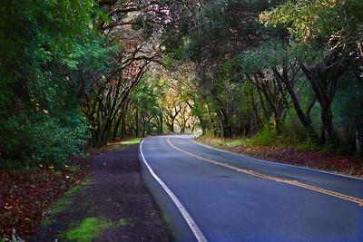 Highway 128, Mendocino