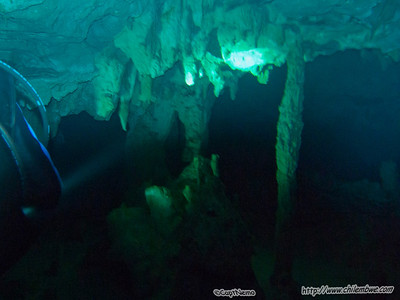 Mexico Riviera, Quintano Roo, trip to dive Cenotes and swim with whale sharks.