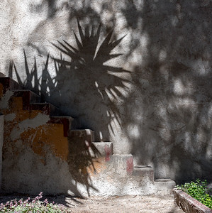 Stairway and Shadow-