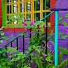 casa de los colores