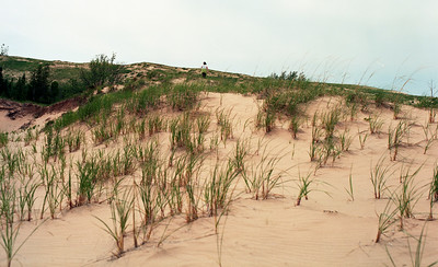 Walking the Dunes