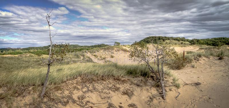 Saugatuck Dunes near Oval Beach