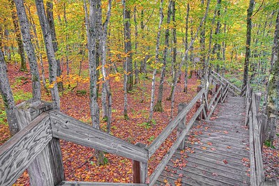 Summit Peak Boardwalk 1