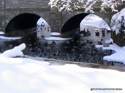 postroadphotos-places-usa-milford-connecticut-winter-scene-2004-010