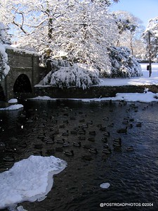 postroadphotos-places-usa-milford-connecticut-winter-scene-2004-013