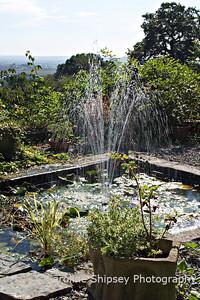 """Milton Lodge Gardens"" Wells Somerset"
