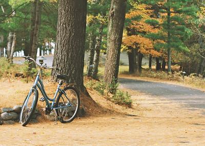 Bike 5 x 7