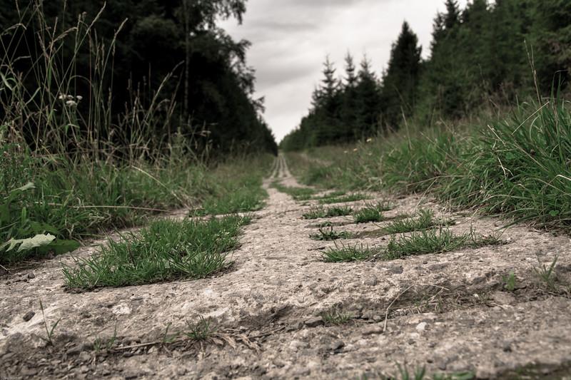Ehemaliger DDR-Grenzweg / Former GDR border trail
