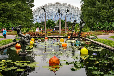 Strolling Through - Missouri Botanical Garden