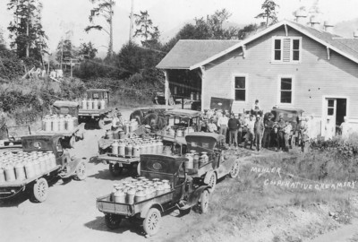 The cheese factory was a thriving business as well as popular tourist stop. Today the building serves as the Nehalem Bay Winery.