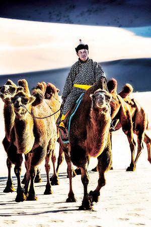 Circling Camels  Gobi Desert  Copyright 2020 Steve Leimberg  UnSeenImages Com _Z2A5814
