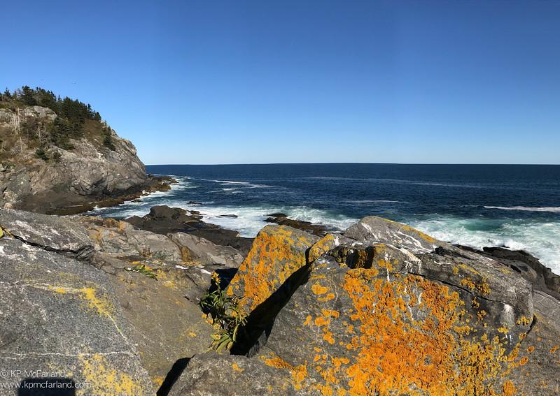 Gull Cove