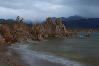 Mono Lake - Moose Peterson Workshop