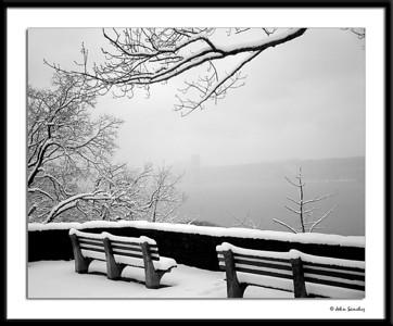 Monochrome Winter