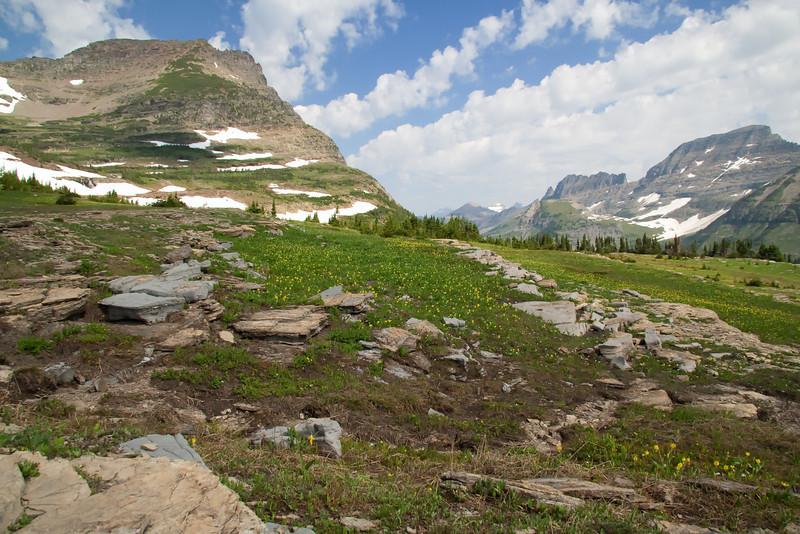 Logan Pass - Glacier National Park