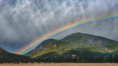 Montana Rainbow