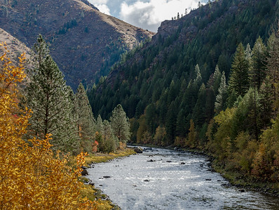 Selway River 1