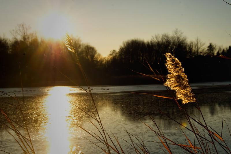 Sunset at Beaver Lake