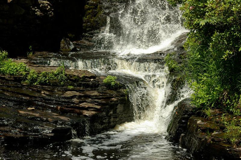 Mill Weir Falls, Moore SP