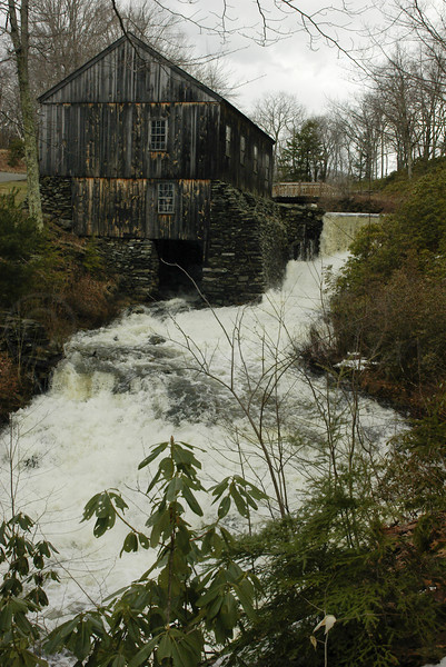 Old Saw MIll, Moore State Park