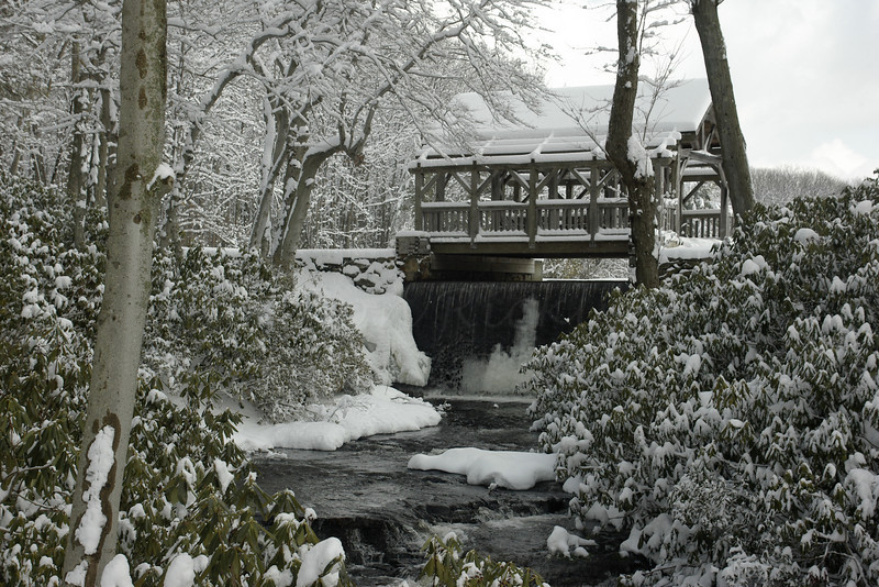 Covered bridge and mill weir, Moore State Park
