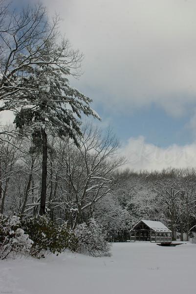 Snow shoe Views II
