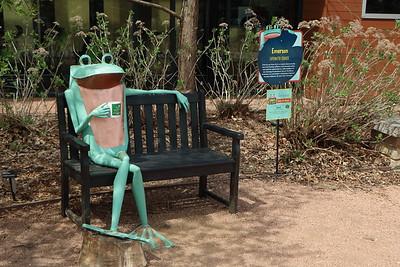 Morton Arboretum Frogs 2016