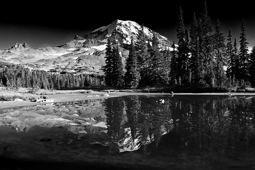 Spray Park Reflection of Mount Rainier