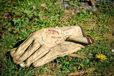 Abandoned Glove
