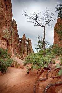 Colorado Garden of the Gods--11