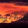 Mt_Rainier_Morning-1221