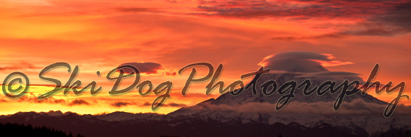 Mt_Rainier_Morning-1226