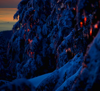 Icicles  A crop from a larger photo, colors enhanced to highlight the sunset colors shining on the icicles. The lighting was really something up here - the snow on the ground was all orange on the sunward side and blue on the shady side.
