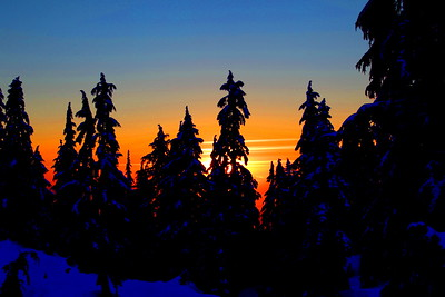 Sunset Silhouette #1  An experiment with turning a photo into something painterly. I brightened and saturated the existing blueness of the snow patches in the foreground while darkening the trees to silhouettes and saturating the sunset colors a bit. Seems to be I've seen something much like this as a painting somewhere before.