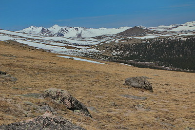 Mount Evans from above Goliath Natural Area