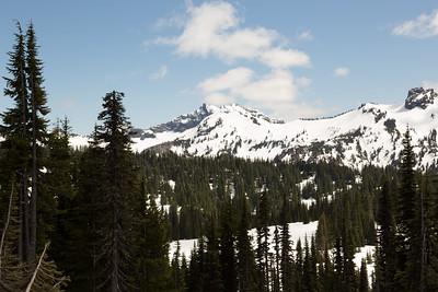 2013_05_31 Mt Rainier 041