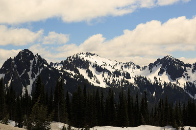 2013_05_31 Mt Rainier 062