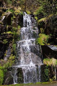 2013_05_31 Mt Rainier 006