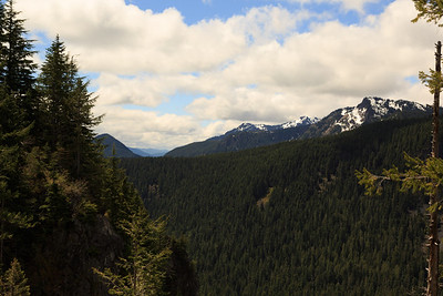 2013_05_31 Mt Rainier 015