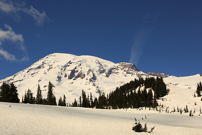 2013_05_31 Mt Rainier 106