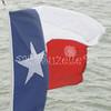 (101) Texas Flag