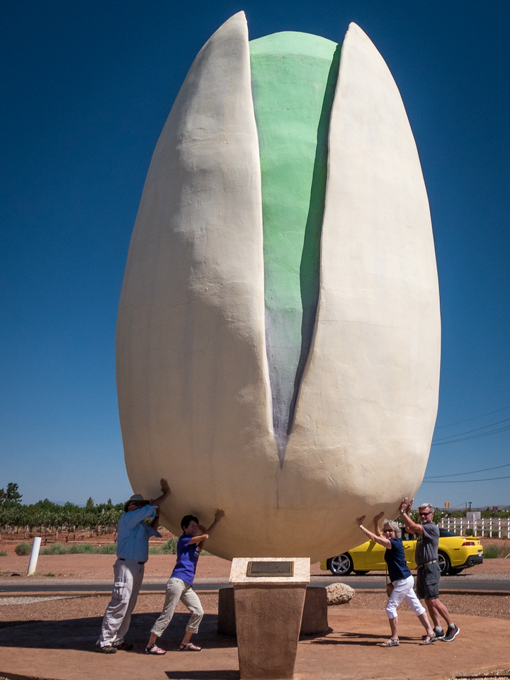 WORLDS LARGEST PISTACHIO