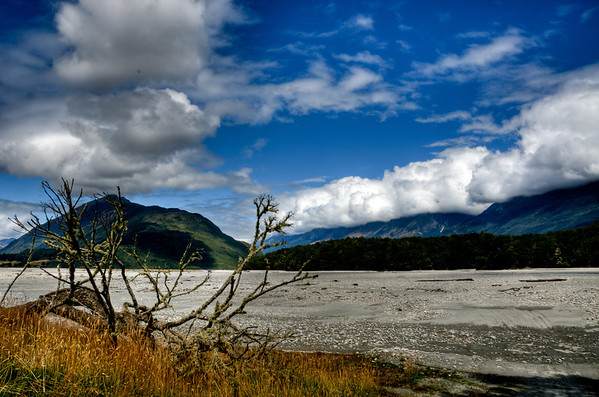 Dart River bed