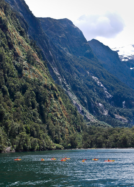 Kayaks on Milford Sound