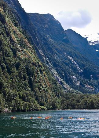 Kayaks on Milford Sound