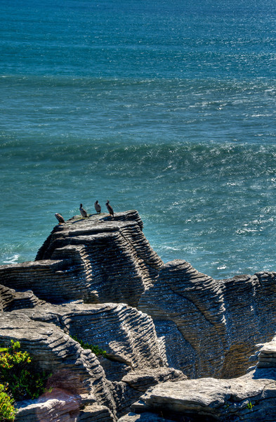 Pancake Rocks, west coast of South Island