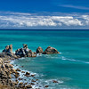Western coast of the South Island