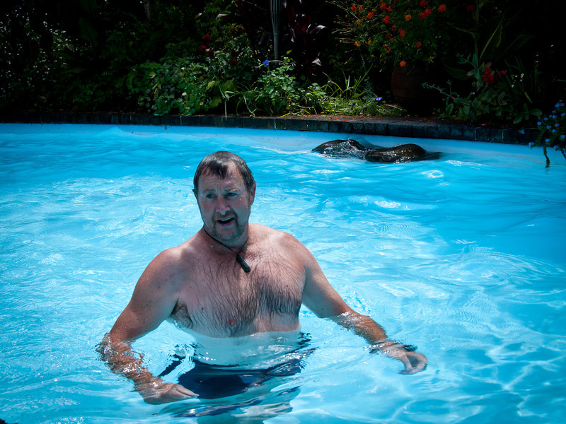 Nigel, enjoying a refreshing dip at one of our host's pool
